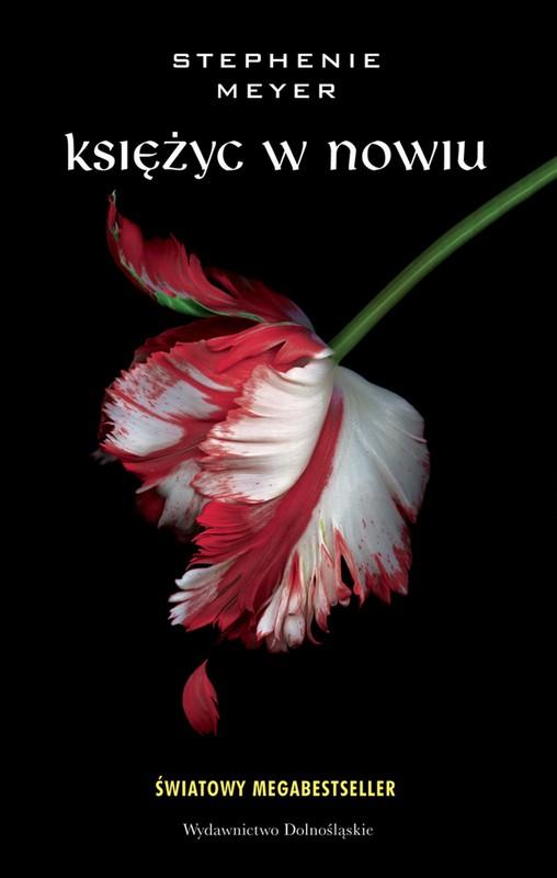 Intruz Stephenie Meyer Ebook