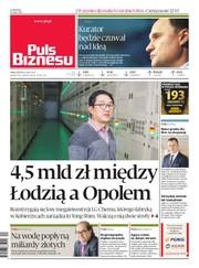 2fe7d7914 Puls Biznesu 93/2019 - dziennik, pdf, epub, mobi - eprasa ...