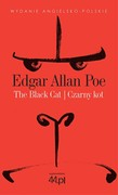 The Black Cat. Czarny kot Edgar Allan Poe - ebook epub, mobi