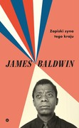 Zapiski syna tego kraju James Baldwin - ebook epub, mobi