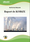 Raport do KOBiZE - ebook pdf