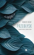 Przebłysk Robert Rient - ebook epub, mobi